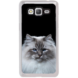 ifasho Innocent Cat with brown Eyes Back Case Cover for Samsung Galaxy Grand Prime