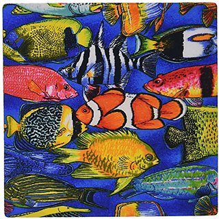 3dRose LLC 8 x 8 x 0.25 Inches Tropical Fish Mouse Pad (mp_5741_1)