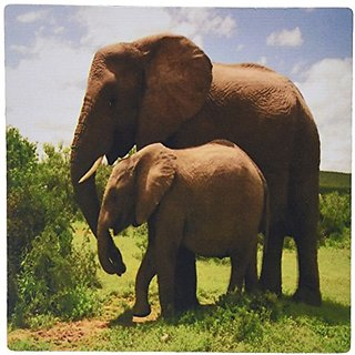 3dRose LLC 8 x 8 x 0.25 Inches Mouse Pad, Mama and Baby Elephants in Wild (mp_44876_1)