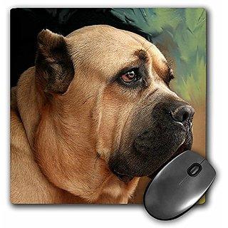 3dRose LLC 8 x 8 x 0.25 Inches Mouse Pad, Cane Corso (mp_4486_1)