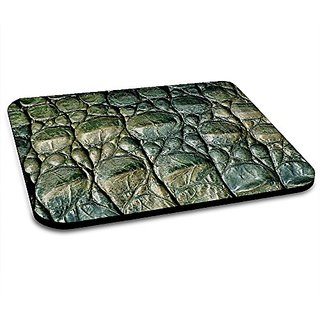 Insomniac Arts - Alligator Skin Animal Print Mousepad