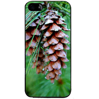 Ayaashii Single Pine Cone Back Case Cover for Apple iPhone 5::Apple iPhone 5S