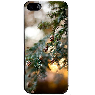 Ayaashii Pine Cone Tree Back Case Cover for Apple iPhone 5::Apple iPhone 5S