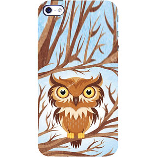 ifasho Animated Owl Pattern Back Case Cover for Apple iPhone 5