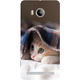 Casotec Sleepy Kitten Design 3D Printed Hard Back Case Cover for Vivo Xshot