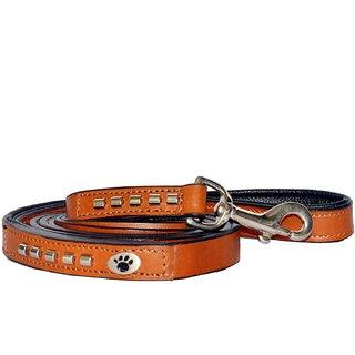 PetsUp Stylish Flat Lead Dog Leash Dog Leather Leash or Dog Belt (Large, Tan)