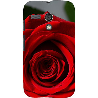 ifasho Red Rose Back Case Cover for Moto G