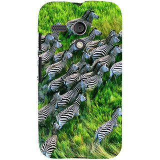 ifasho Zebra with S3Dipes Back Case Cover for Moto G