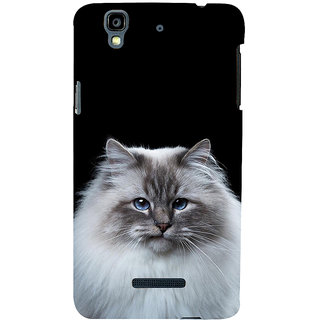 ifasho Innocent Cat with brown Eyes Back Case Cover for YU Yurekha