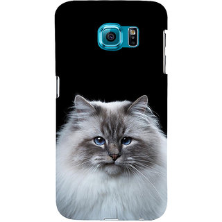 ifasho Innocent Cat with brown Eyes Back Case Cover for Samsung Galaxy S6 Edge Plus
