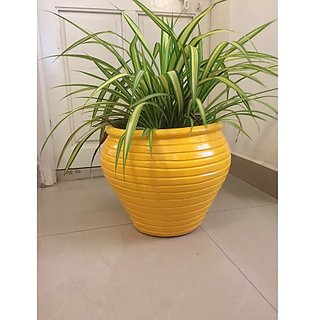 Ring pot - yellow