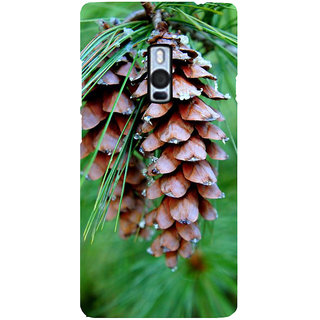 Ayaashii Single Pine Cone Back Case Cover for One Plus Two::One Plus 2::One+2