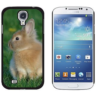 Graphics and More Bunny Rabbit Brown Tan, Easter Snap-On Hard Protective Case for Samsung Galaxy S4 - Non-Retail Packagi