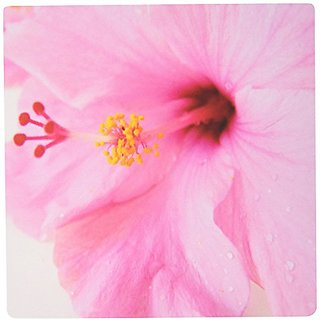 3dRose LLC 8 x 8 x 0.25 Inches Mouse Pad, Large Pink Hibiscus Macro (mp_38229_1)