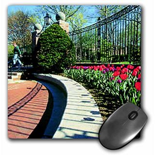 3dRose LLC 8 x 8 x 0.25 Inches Tulips Mouse Pad (mp_811_1)