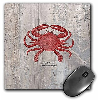 3dRose LLC 8 x 8 x 0.25 Inches Mouse Pad, Red Crab on Wood Beach Themed Art Fish (mp_99167_1)