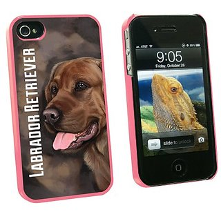 Graphics and More Chocolate Labrador Retriever Brown - Dog Pet - Snap On Hard Protective Case for Apple iPhone 4 4S - Pi