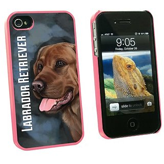 Graphics and More Chocolate Labrador Retriever Blue - Dog Pet - Snap On Hard Protective Case for Apple iPhone 4 4S - Pin