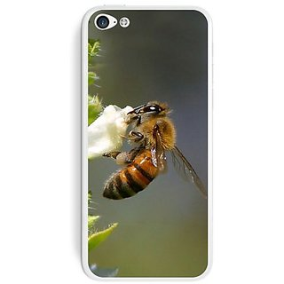 Graphics and More Bee On Flower Protective Skin Sticker Case for Apple iPhone 5C - Set of 2 - Non-Retail Packaging - Opa
