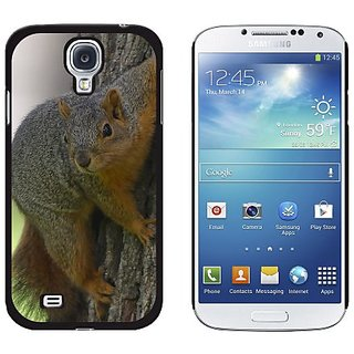 Graphics and More Squirrel - Snap On Hard Protective Case for Samsung Galaxy S4 - Non-Retail Packaging - Black