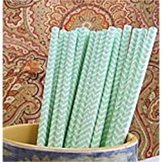 CleverDelights Biodegradable Paper Straws - Mint Chevron - Box of 50