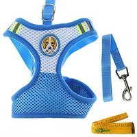 Mesh Dog Cat Pet Vest Harness And Matching Leash Set For Small Dogs Cats Pets (Small, Blue)
