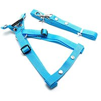 Pet Nylon Harness And Leash Set For Small Dog Or Cat (4 Feet Long) (Blue)