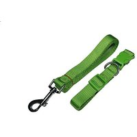 Zone 70 Dog Collar And Leash Set, Green In Small, Medium And Large (Medium)