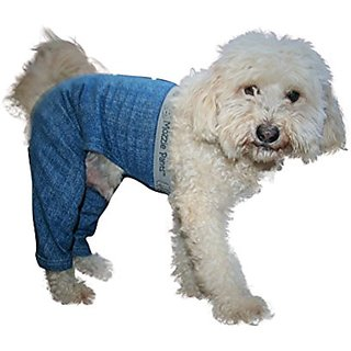 Mozzie Pants SWPBLUE Walking Dog Pants, Small