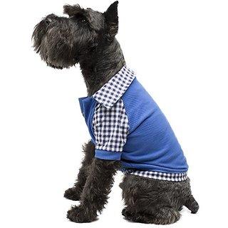 Legitimutt Cotton Polo Dog T-Shirt with Gingham, Medium, Blue