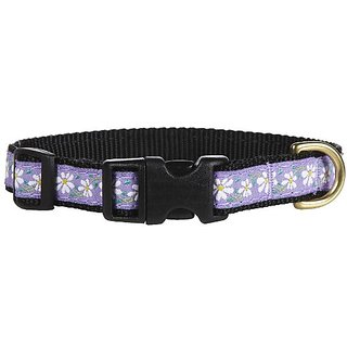 Up Country Daisy Dog Collar, Size Small, Narrow Width