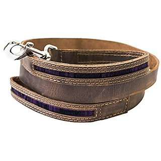 Rustic Mayan Dog Leash (6 feet) Handmade by Hide & Drink :: Tropical Purple
