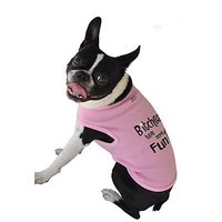 Ruff Ruff And Meow Dog Tank Top, Bitches Have More Fun, Pink, Extra-Large