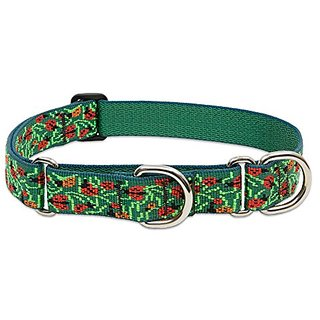 Lupine 1 Inch Beetlemania Combo Dog Collar for Large Dogs, 15 to 22-Inch