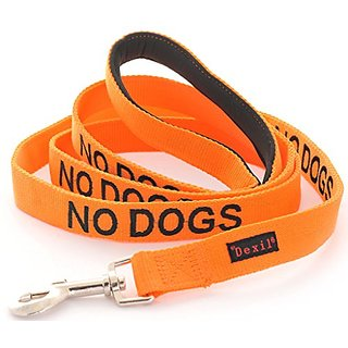 NO DOGS Orange Color Coded 6 Foot Padded Dog Leash (Not Good With Other Dogs) PREVENTS Accidents By Warning Others of Yo