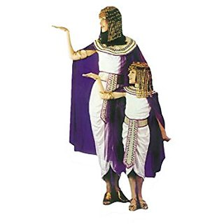 RoarSoar Pretend Play Cleopatra Costume (Age 7 to 8 Years), Large, One Color