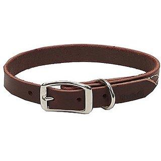 Coastal Pet 02108 B LAT24 Leather Dog Collar, 1 by 24-Inch