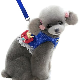 Alfie Pet by Petoga Couture - Alison Step-in Harness and Leash Set - Color: Blue, Size: Large
