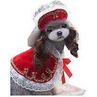 Victorian Princess Elegant Lace Cap With Wig Plus Pet Shawl Skirt Suits Small Size And Middle Size For Pet Doggy.(Red)
