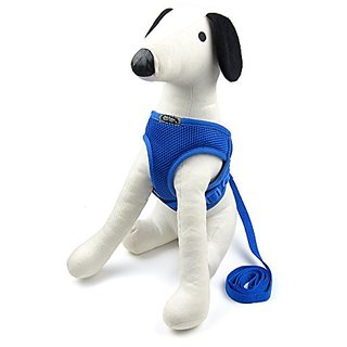 Alfie Pet by Petoga Couture - Joyce Step-in Harness and Leash Set - Color: Blue, Size: Medium