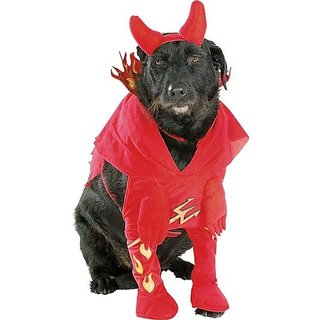 Rubies Devild Lil Devil Dog Halloween Costume, Medium 14