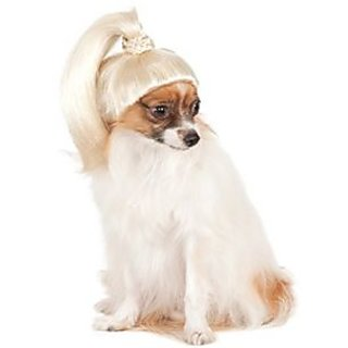 Pet Wig Blonde Ponytail, Medium/Large