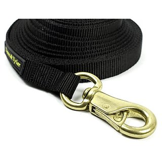 Dean & Tyler Double Ply Nylon Dog Leash with Massive Brass Snap, 10-Feet by 3/4-Inch, Black
