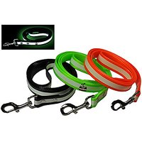 New Glow In The Dark Dog And Cat Safety Leash Lead, Durable Strong TPU Leash, Suitable For Small Medium And Large Cats O