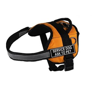 Dean & Tyler Works Service Dog Ask to Pet Harness, XX-Small, Fits Girth Size: 18 to 21-Inch, Orange/Black