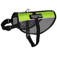 Dogline MaxAire Multi-Purpose Mesh Vest For Dogs And 2 Removable Therapy Dog Patches, Large, Green