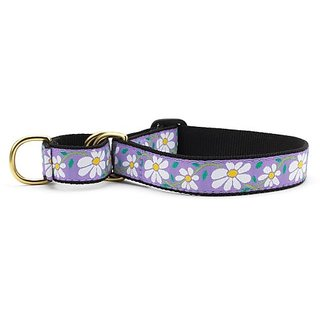 Daisy Martingale Dog Collar - Large (13.5-22.5 Inches) - 1 In Width