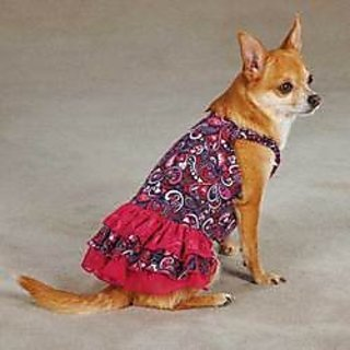 East Side Collection Polyester/Cotton Retro Paisley Dog Dress, XX-Small, Pink