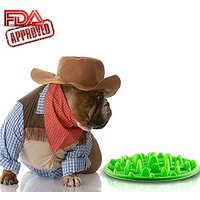 Slow Feed Dog Bowl - FDA Approved Bloat Remedy Will Guarantee Slower Feeding Time - Great For Cats (Green, Large)