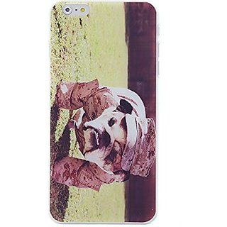 CaseBee - Cool Pit Bulldog in Military Uniform iPhone 6 Plus (5.5) Case (Package includes Screen Protector)